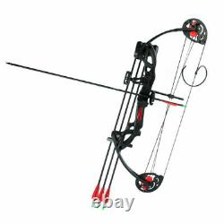 15-29lbs Pro Compound Bow Right Hand Bow Kit Archery Arrow Target Hunting Set US
