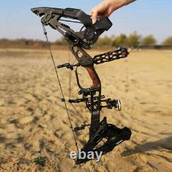 Archery Compound Bow 21.5-80lbs Catapult Dual-use Steel Ball Hunting Shooting RH