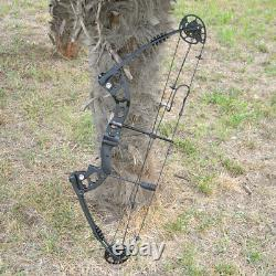 Compound Bow Carbon Arrows Set 30-55lbs Adjustable Archery Bow Shooting Hunting