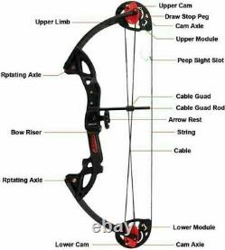 US Compound Bow 15-29LBS Right Hand Hunting Archery Target With Brush 30 Arrows