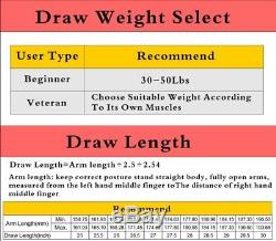 US Stock 19-70 LBS Compound Bow & Arrow Archery Hunting Target Limbs Bow 19-30